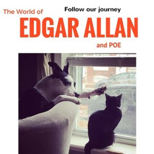 Follow edgar allan poe